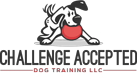 Challenge Accepted Logo